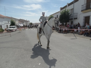 Bodonal de la Sierra acogerá su XXV Paseo de Caballos este domingo