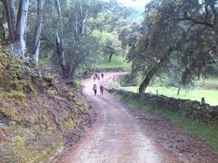 VII Ruta Senderista `de las cumbres´ en Cabeza la Vaca - Sierra de Tentudía