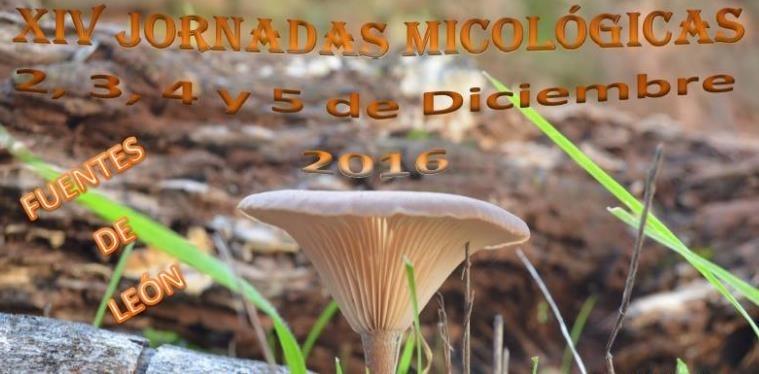 Este viernes comienzan las XIV Jornadas Micológicas en Fuentes de León