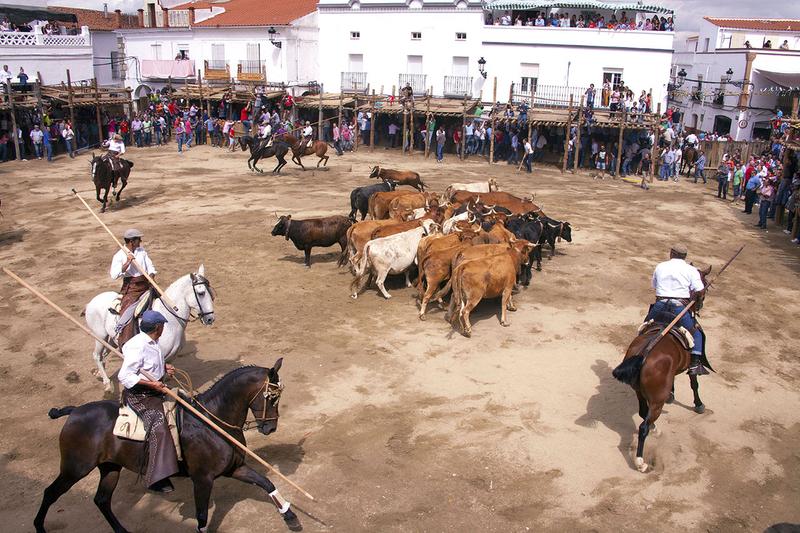 El Plan Estratégico de Diputación subvenciona 58.000 euros entre Cedeco y 5 festejos de la Comarca