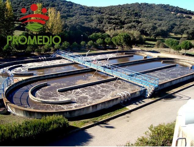 ¿Qué puedes hacer para facilitar la depuración del agua?