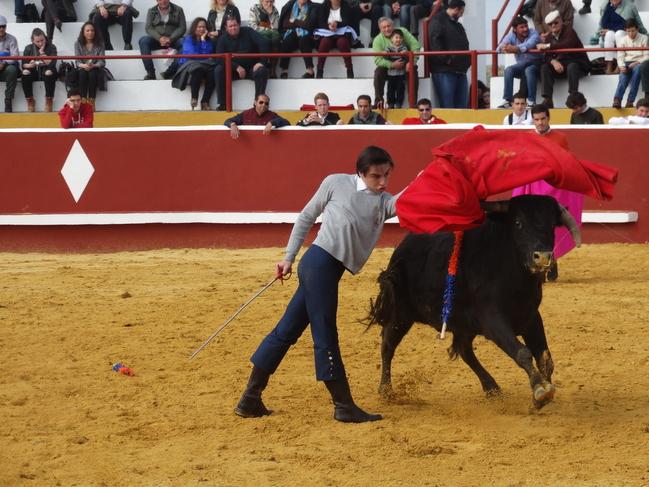 El curso de la Escuela de Tauromaquia de la Diputación de Badajoz iniciaba su andadura hoy en Bienvenida (fotogalería)