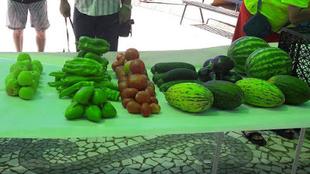 Celebrados los concursos de fotografía, tortilla y hortalizas en Bodonal de la Sierra