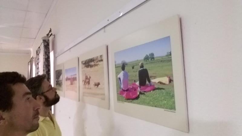 La exposición ''Toros y Dehesa Extremeña'' llega a Bienvenida este mes de agosto