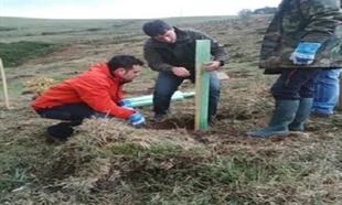 Las plantaciones participativas de Ecologistas en Acción continúan este domingo en Monesterio
