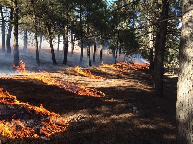 La Junta aconseja suspender quemas de restos este fin de semana para evitar incendios