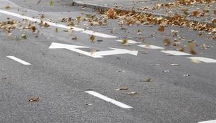 Alerta amarilla en el sur de la provincia Badajoz por fuertes vientos hoy de 10h a 21h