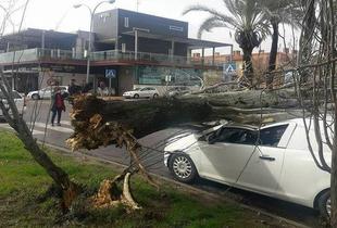 Gisele deja rachas de viento de 100Km/h en Extremadura