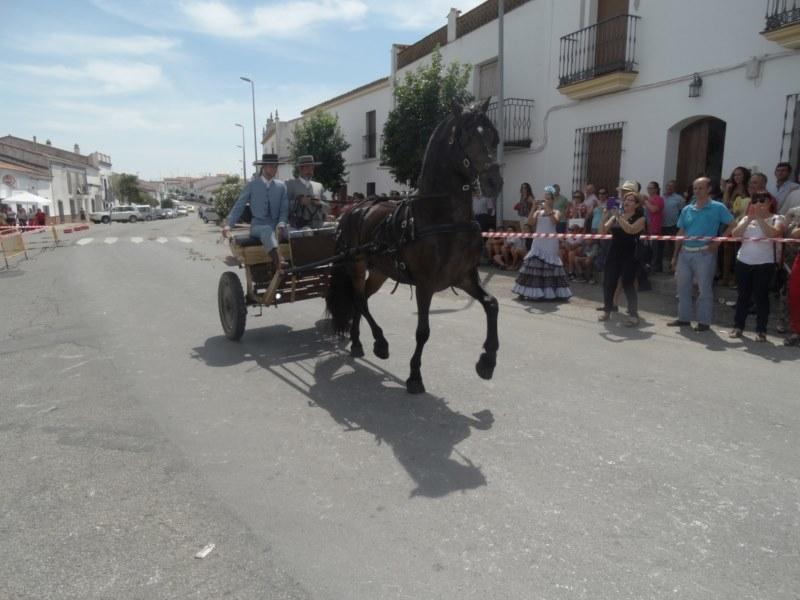 Bodonal de la Sierra vivirá su `XXIV Paseo de Caballos´ a finales de mes