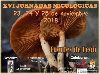 Disfruta de las `XVI Jornadas Micológicas´de Fuentes de León en Noviembre (Programación Completa)