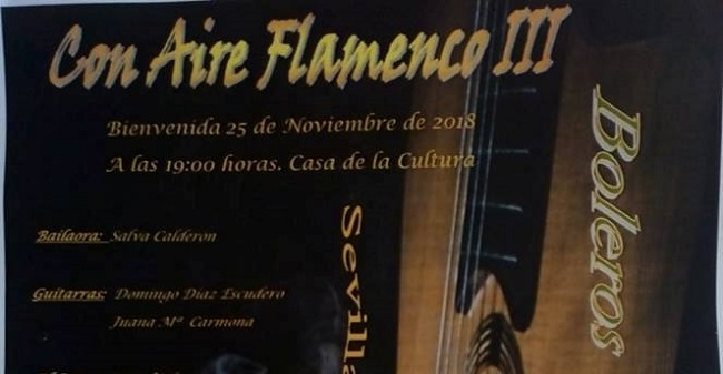 El Flamenco vuelve a Bienvenida con `Aire Flamenco III´