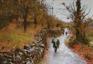 Bodonal acoge la I Ruta de Senderismo `Caminando por la Dehesa´