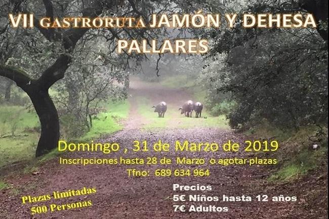 Pallares celebrará su `VII Gastroruta del Jamón y la Dehesa´ en el mes de marzo