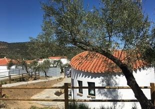 El Ayuntamiento de Montemolín amplía su oferta turística con la inauguración de tres bungalós