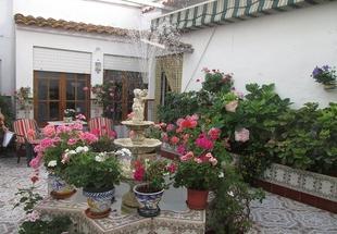 Los Patios y Balcones de Fuentes de León lucieron un año más