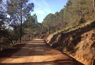 Fuentes de León y Monesterio se beneficiarán de los más de 2.500.000 de euros destinados a la mejora de caminos rurales