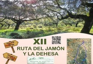 Fregenal de la Sierra celebra este mes la `XII Ruta del Jamón y la Dehesa´
