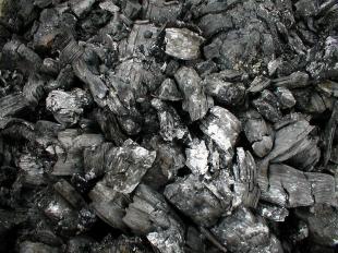 La Junta subvenciona con casi un millón de euros para una fábrica de carbón vegetal que se instalará en Fregenal
