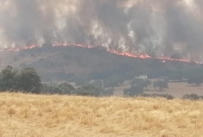 Estabilizados los incendios focalizados en la tarde de hoy entre el suroeste extremeño y la sierra onubense