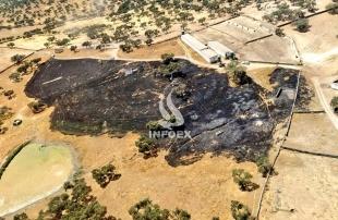 Nuevo incendio en Higuera la Real provocado por el contacto de un ave con el tendido eléctrico