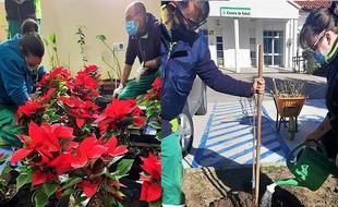 El proyecto formativo Aguablanca embellece y restaura parques y jardines de Monesterio