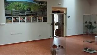 Se abre el Museo del Piñón dentro del Conventual Santiaguista de Calera de León