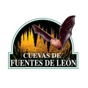 Encuentran en las Cuevas de Fuentes de León la mandíbula de oso pardo más antigua de la Península Ibérica